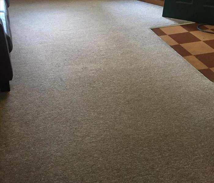 Residential and Commercial Carpet Cleaning in Monroe, Madison and Monticello! After